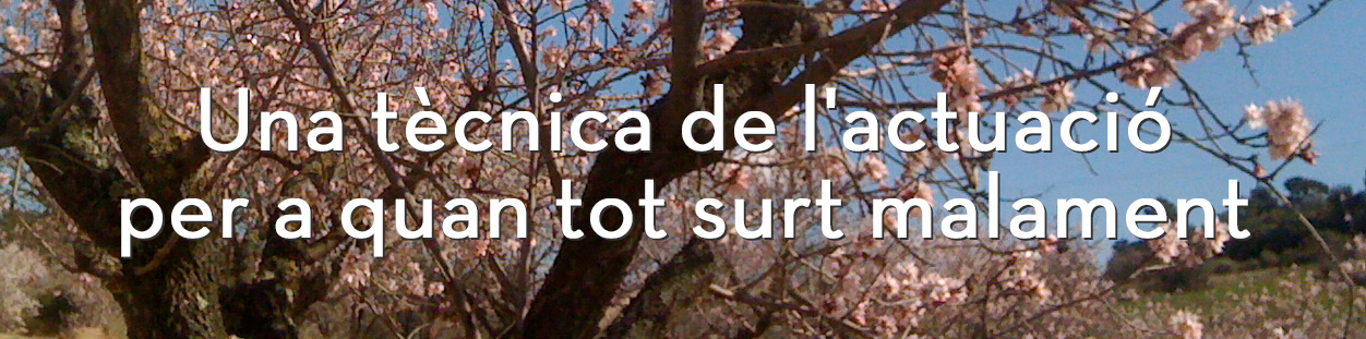 bloc-imagen-cat